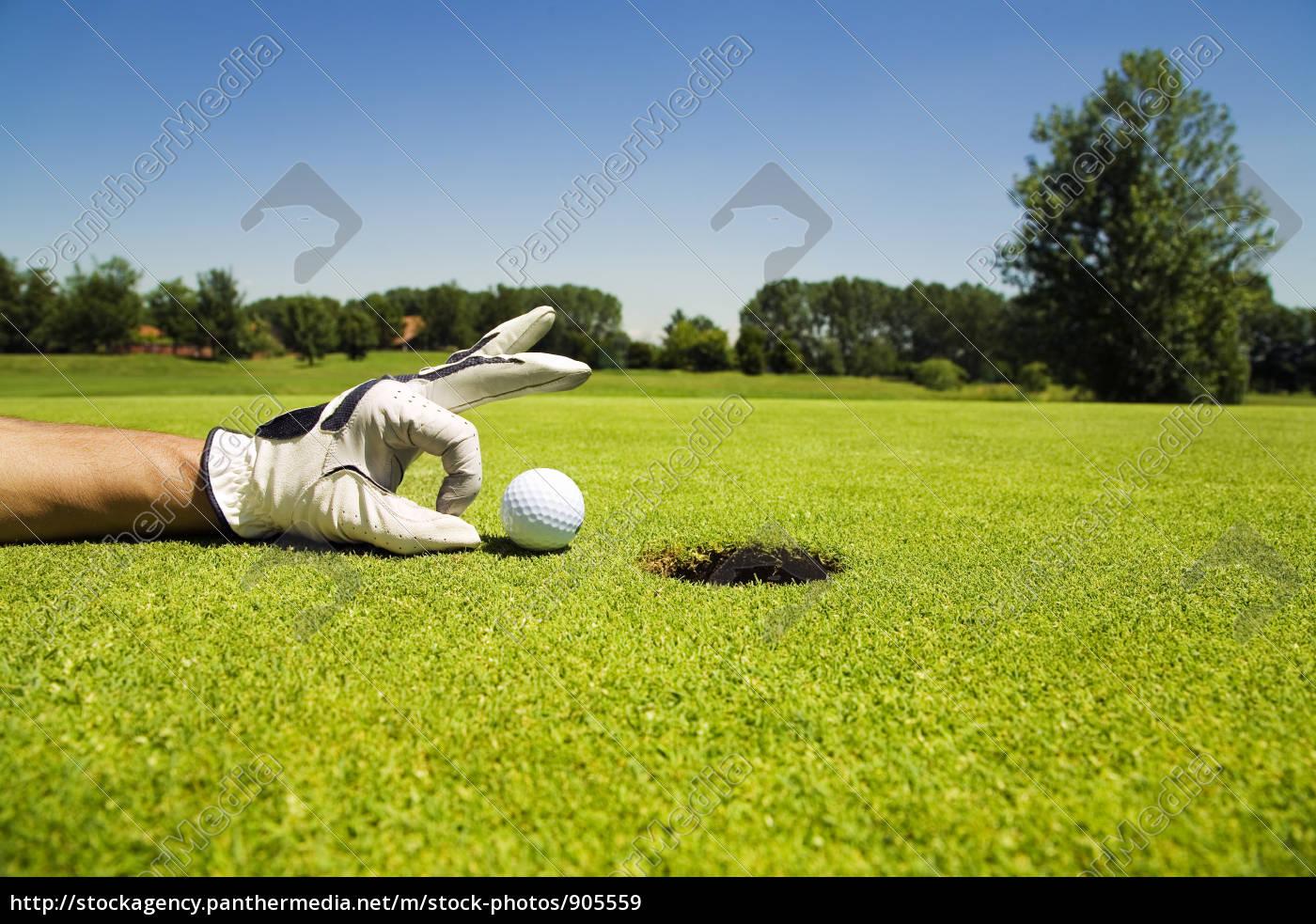 golf, club, - 905559