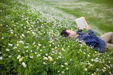 mann lesung auf einer daisy feld