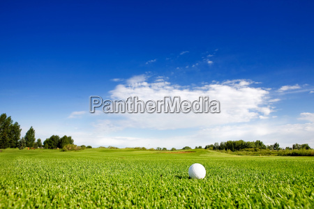 golf - 2202481