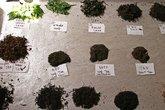 verschiedene exotische teesorten