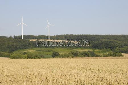 getreidefeld und windkraftanlagen