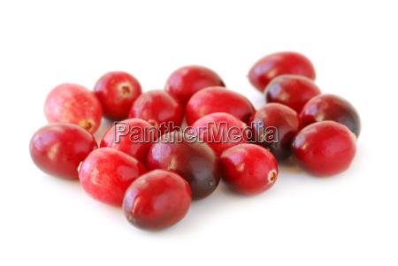 cranberries makro