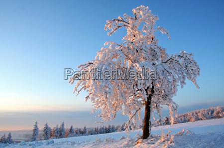 winterabendrot