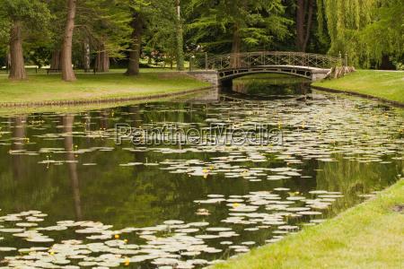 kanal im schlosspark mit seerosen