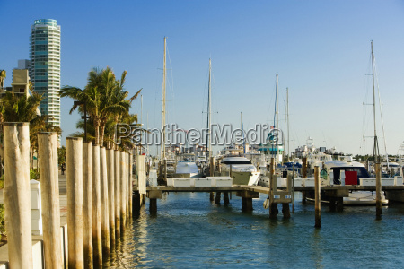 boats moored at a harbor miami