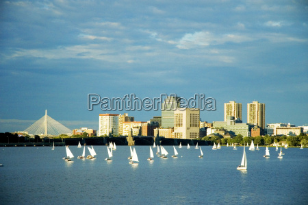 sailboats in a river charles river