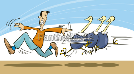 man and ostriches