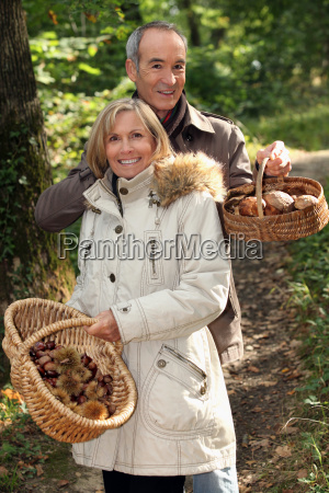 couple gathering mushrooms in a forest