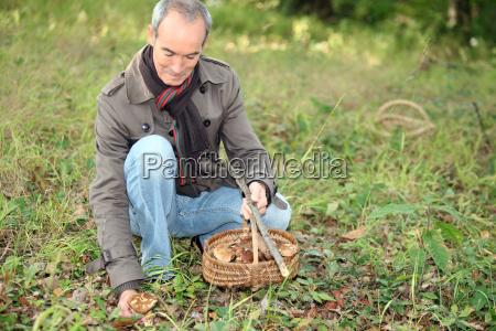 senior gathering mushrooms