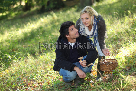 couple picking mushrooms in a field