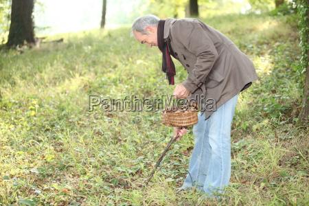 elderly man in wood