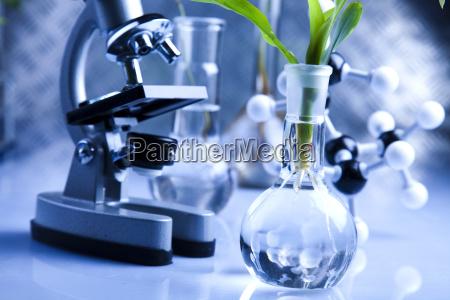 laborgeraete aus glas haltigen pflanzen im