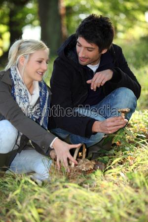 couple gathering mushrooms in park