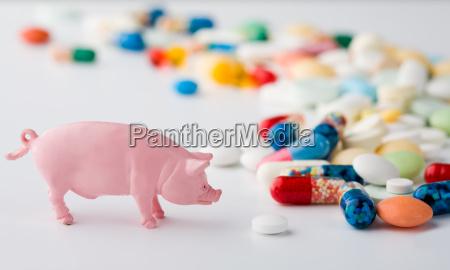 schwein grippemittel