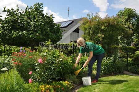 pflege der pflanzen im garten