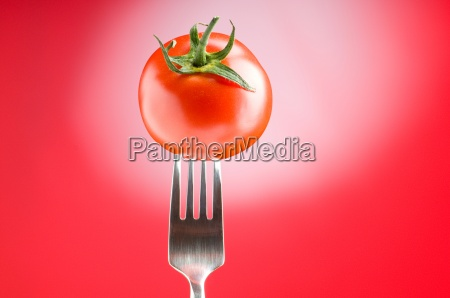 red tomato against gradient background