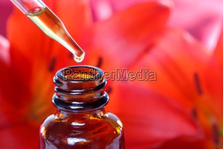 herbal medicine dropper flasche mit blumen