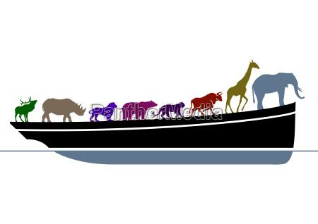 arche noa