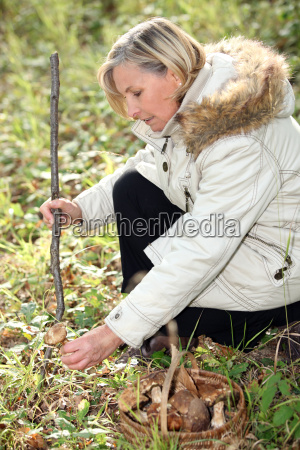 woman gathering wild mushrooms