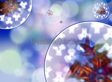 zelle keime bakterien grafik