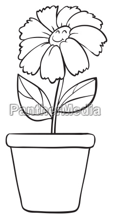 a blue flower and pot sketch