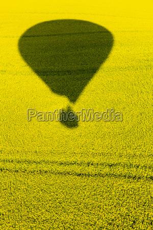 schatten vom heissluftballon auf rapsfeld