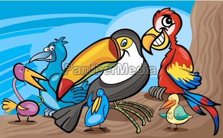 exotic birds group cartoon illustration