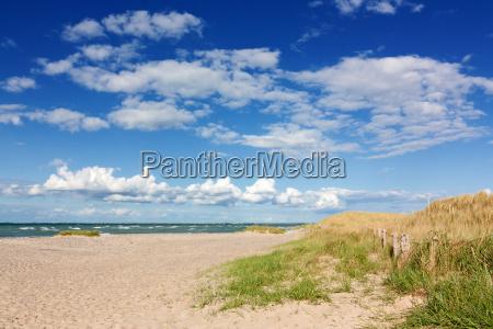 strand mit duenen an der ostsee