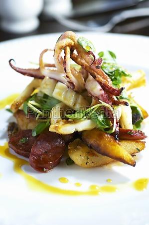 food aliment mollusc sepia kitchen cuisine