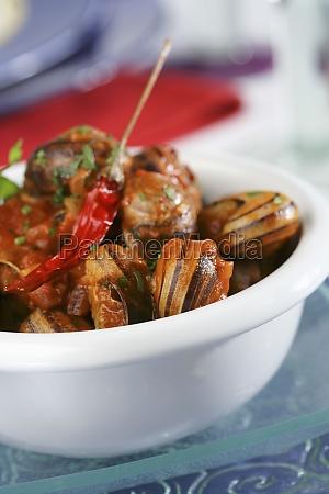 food aliment mollusc europe spain kitchen