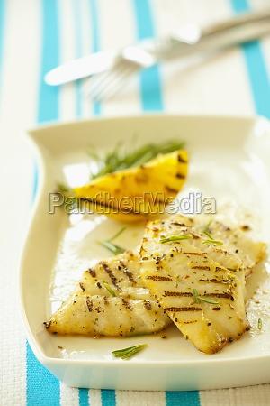 food aliment inside indoor photo fish