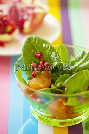 food aliment inside indoor photo coloured