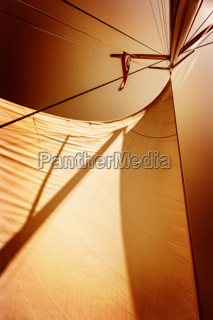 sails in sunset light