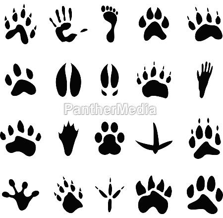 sammlung von 20 tierische und menschliche
