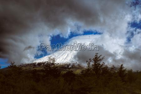 baum baeume berge nationalpark verschneit outdoor