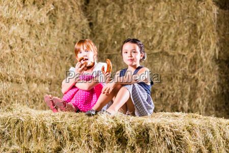 bayrische maedchen sitzen auf heuboden mit