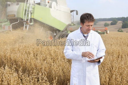 scientist examining oat crop in field