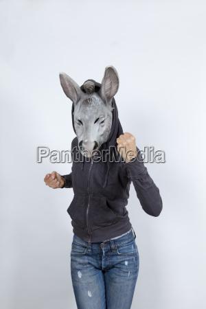 donkey wearing a hoodies