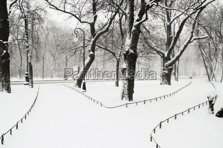 alexandriyski park at snowfall in saint
