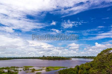 javari river in brazil