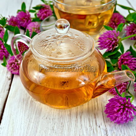 tea with clover in glass teapot