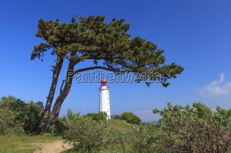 leuchtturm dornbusch auf insel hiddensee