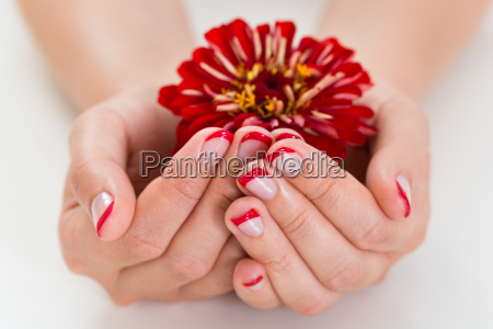 female hands with manicure nail holding