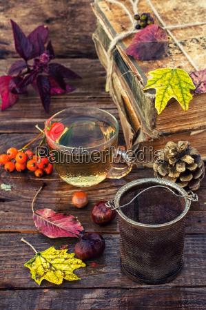 naturemort tea in autumn