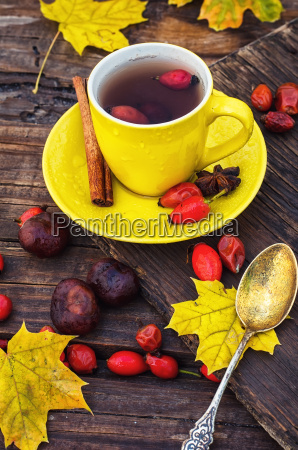 tea with fruits of dog rose