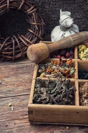 dried medicinal herb