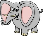 elephant animal character cartoon