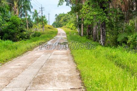 amazonian highway