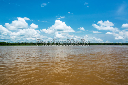 view of the amazon river