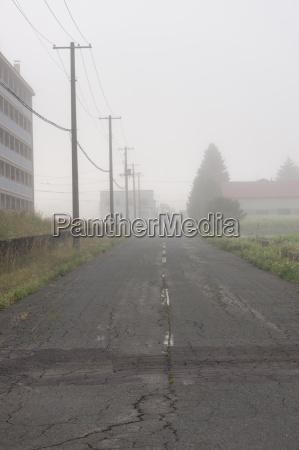 foggy moring road